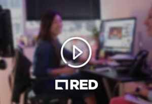 CS-RED-Interactive-Agency